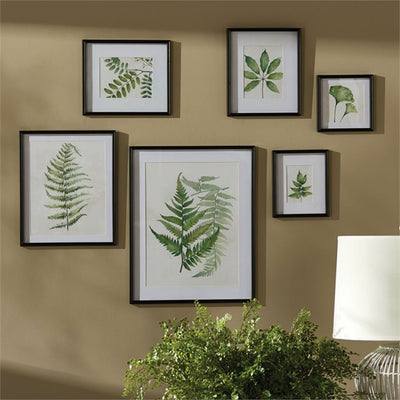 Leaf Study Galllery (Set-6) | Iron Accents