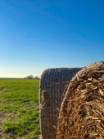Hay bales, blue skies, green grass