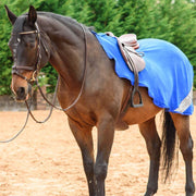 Best On Horse WoW Exercise Sheet Royal Blue