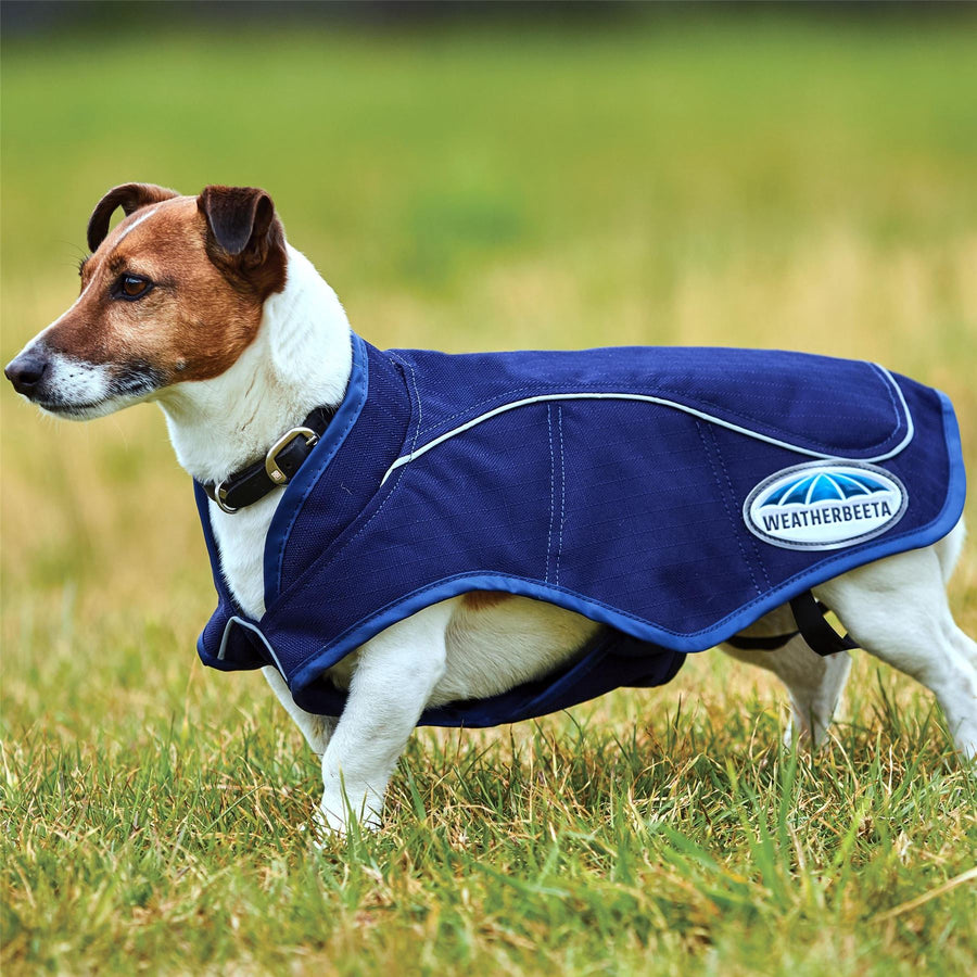 Weatherbeeta 1200D Exercise Dog Coat Blue