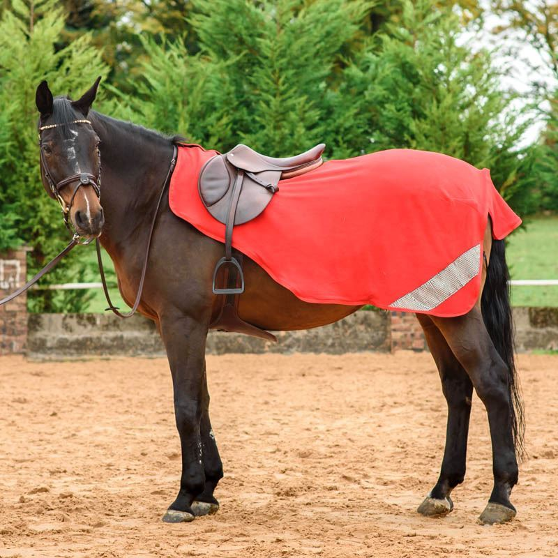 Best On Horse WoW Exercise Sheet Red