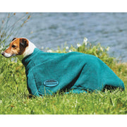 Weatherbeeta Dry-Dog Bag Green