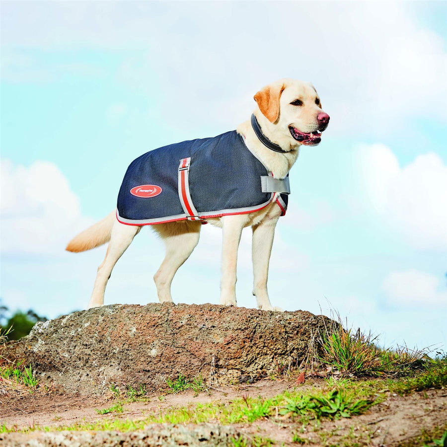 Weatherbeeta 1200D Therapy-Tec Dog Coat Black/Silver/Red 30cm
