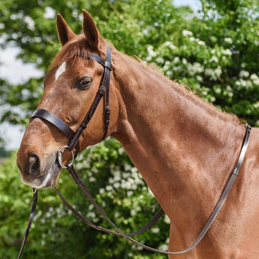 White Horse Equestrian Wilson English Leather Hunt Bridle Brown