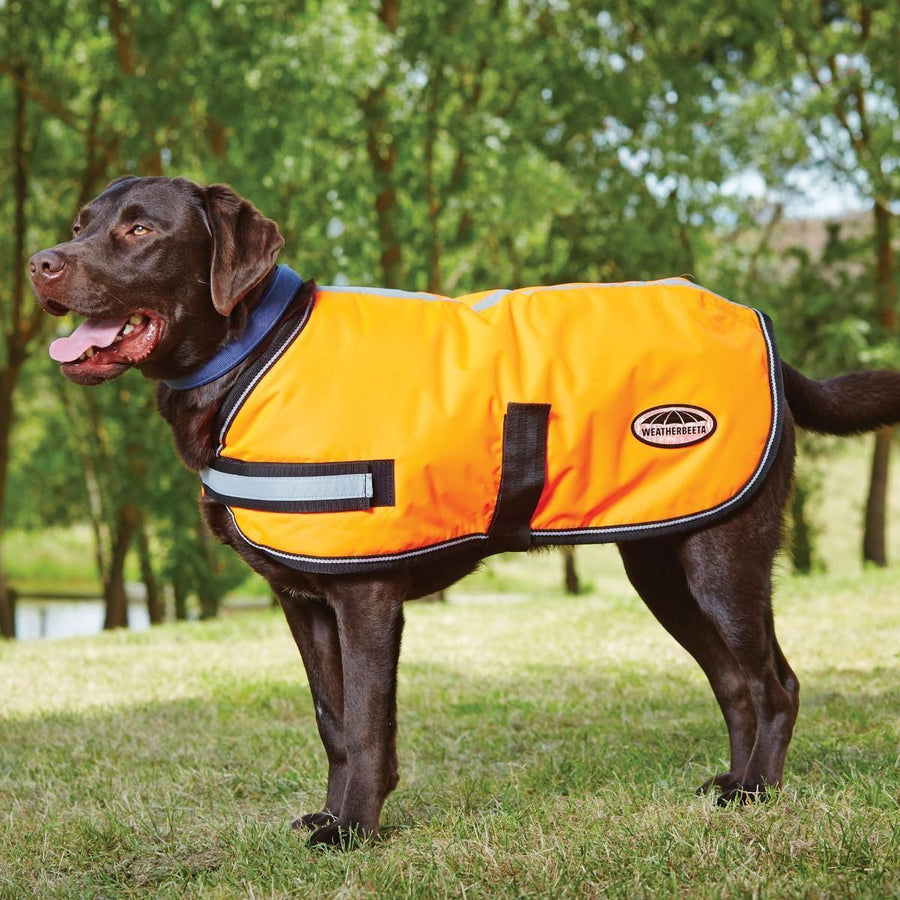 Weatherbeeta Reflective Parka 300D Dog Coat Orange