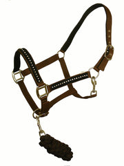 White Horse Equestrian DHC Headcollar Brown