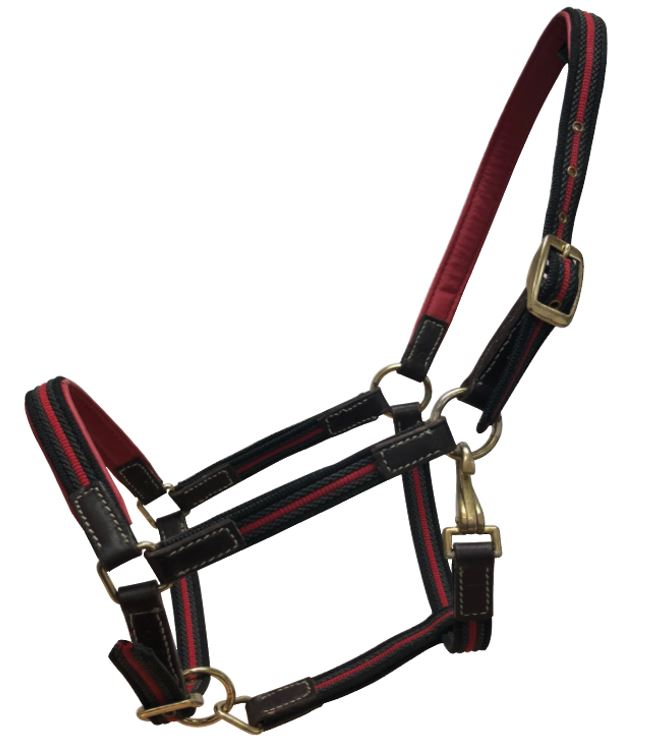 White Horse Equestrian Tape Leather Headcollar Black/Red