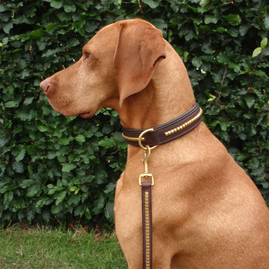Horka Leather 'Clincher' Dog Lead 150cm Brown/Gold