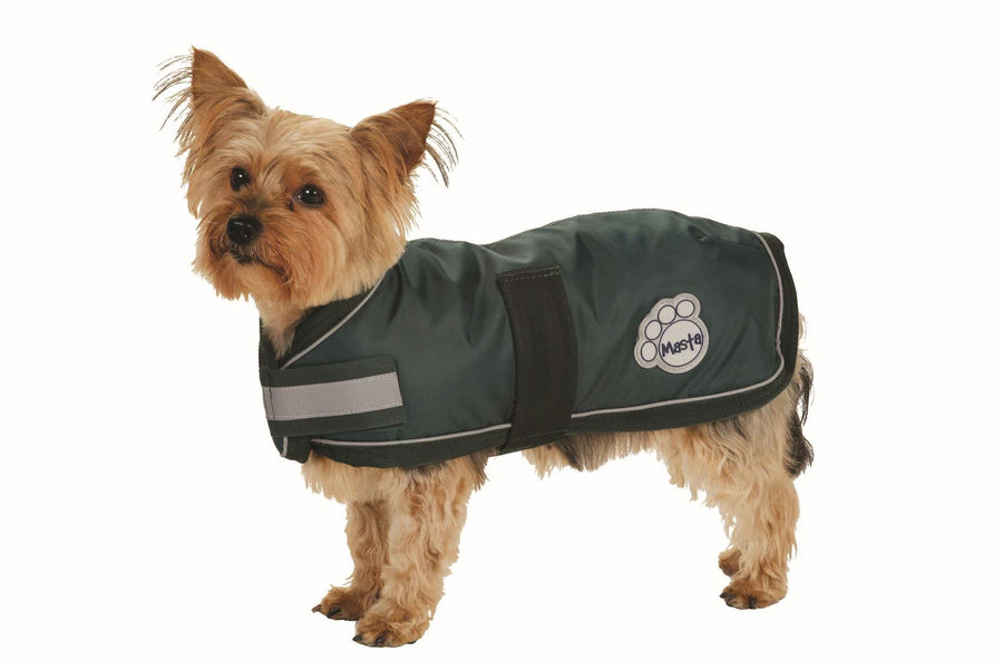 DOG11 Masta Waterproof Nylon Dog Coat Green