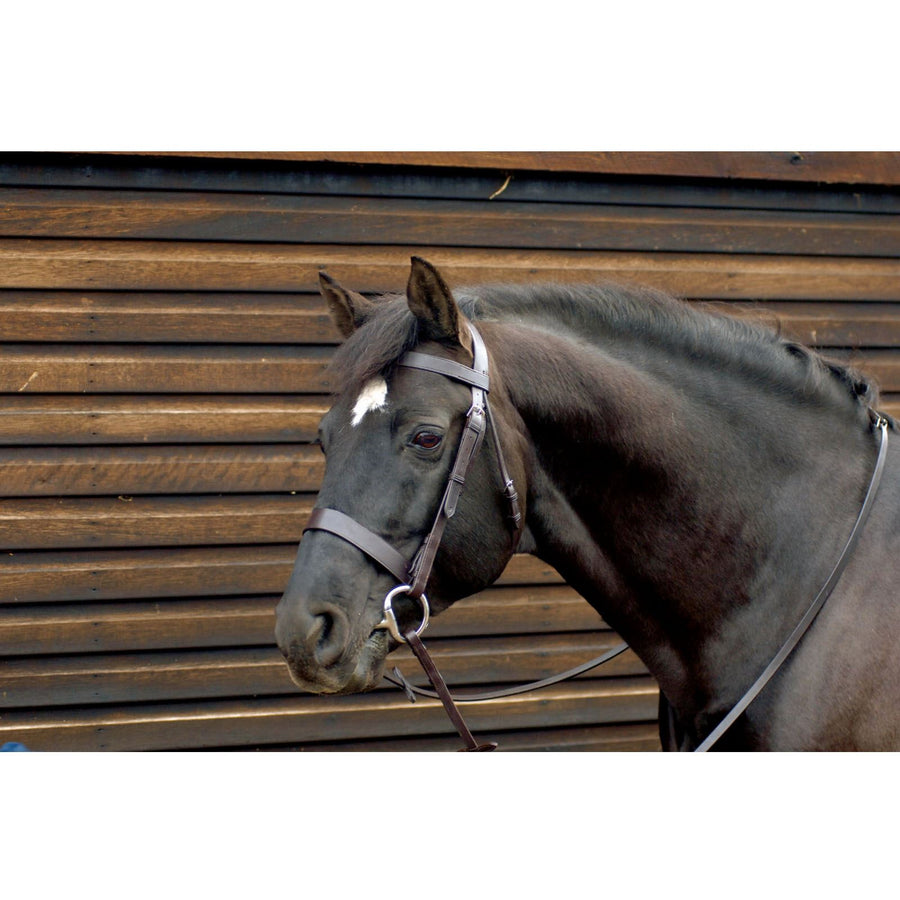 CT215 Caldene Wide Plain Snaffle Bridle Black