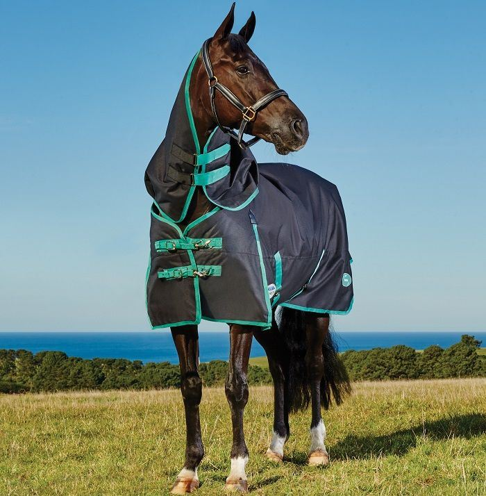 WeatherBeeta Green-Tec 900D Detach-A-Neck Medium turnout Rug