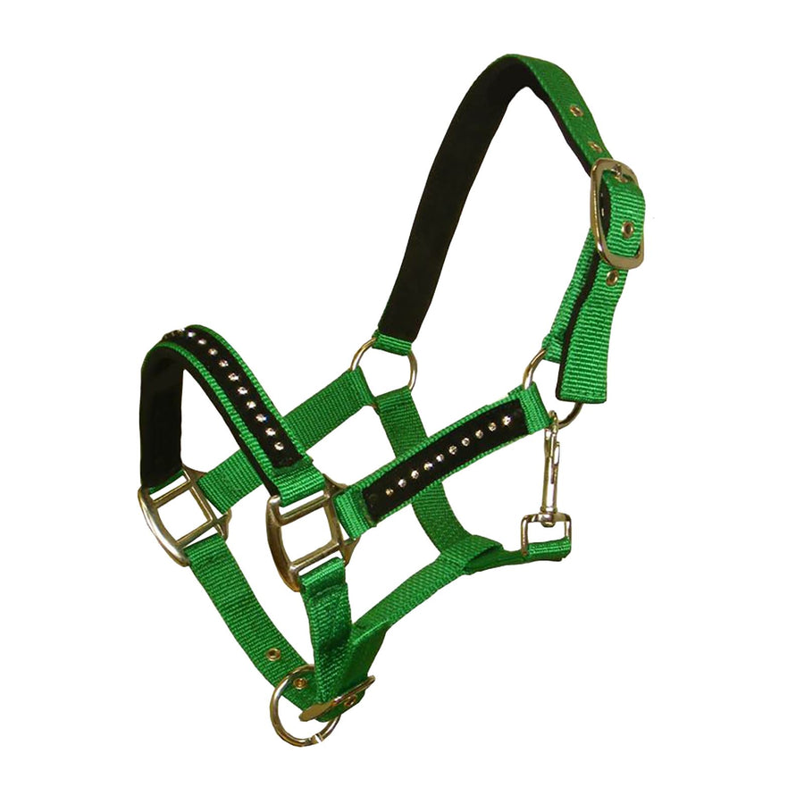 White Horse Equestrian DHC Headcollar without Leadrope Light Green