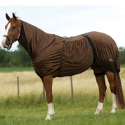 Best on Horse Eczema Sheet Brown