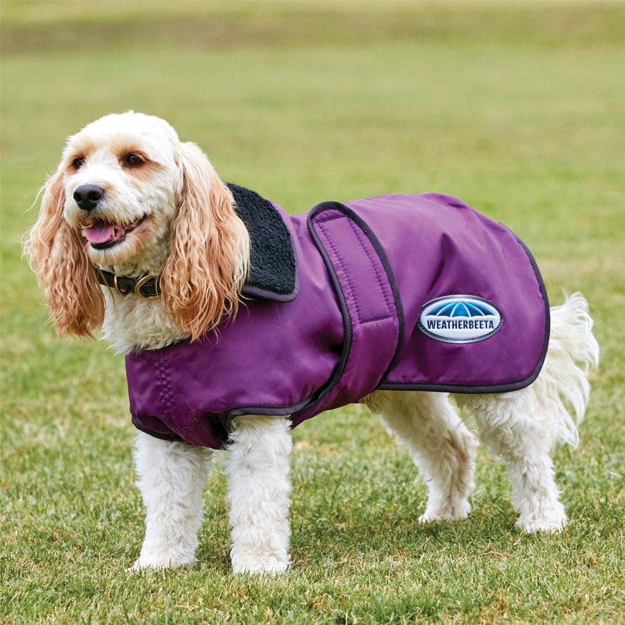 Weatherbeeta Windbreaker 420D Deluxe Dog Coat Purple