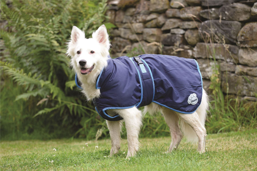 DOG13 Masta Deluxe WP Dog Coat Navy Blue