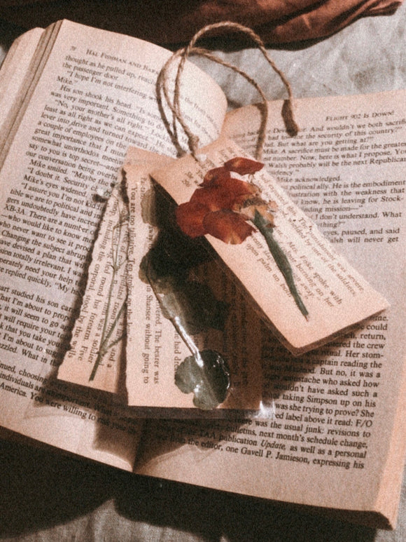 bookmark pack