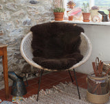 Sheepskin - Brown 1