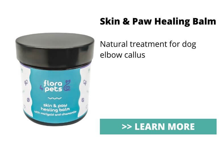 Skin healing balm for dog elbow calluss treatment