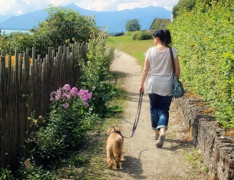 woman walking with dog, dog walk