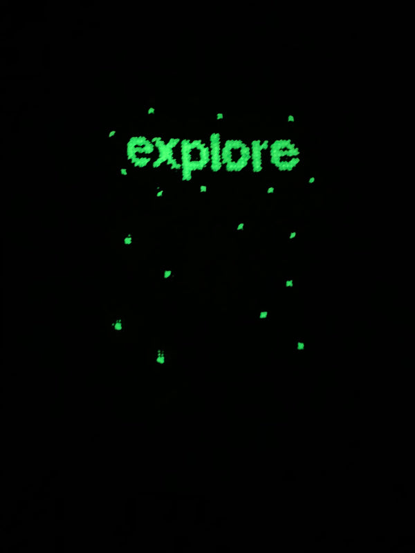 """Explore"" Needlepoint Kit"