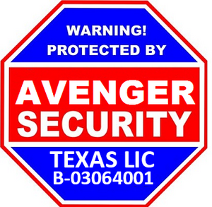 Advanced Security Solutions by Avenger Security