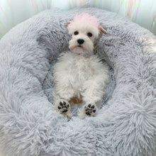 Load image into Gallery viewer, JORMEL 2019 Soft Pet Bed Dog Mats Teddy Autumn Winter Warm Plush Kennel Pet Supplies for Cat Small Dogs - 350 Graphic Design