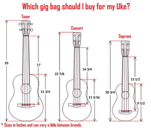 Load image into Gallery viewer, Heavy Duty CONCERT Ukulele Gig Bag (up to 24 Inch) with 15mm Padding, Black