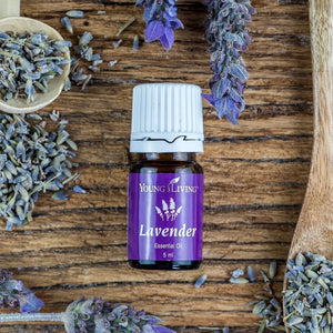 Lavender Oil - CoCo Contemporary Connoisseur Gift Store