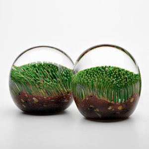 Turf Glass Paperweight - CoCo Contemporary Connoisseur Gift Store
