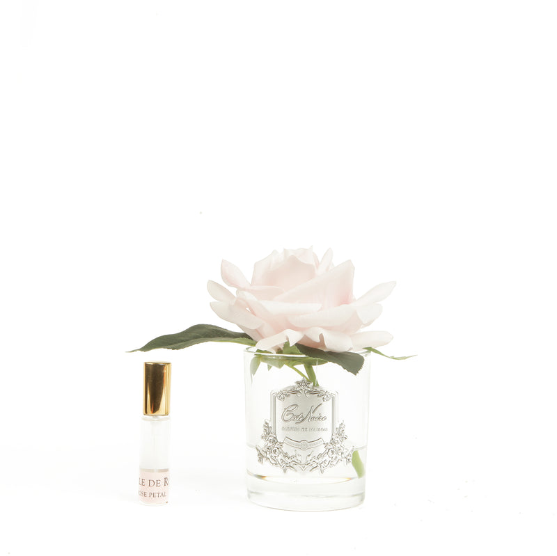 Cote Noire FR701 Perfumed French Single Rose - Epitex