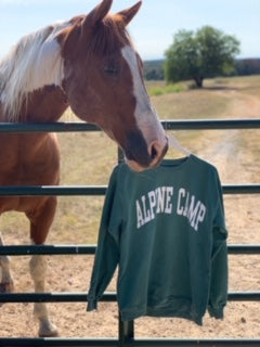 Alpine Comfort Colors Sweatshirt (Green w/white)