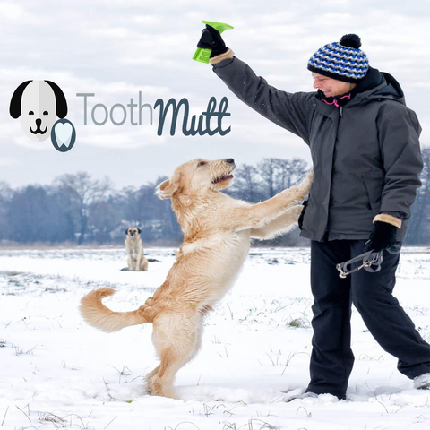 Image of Tooth Mutt - MEKONGOOD.COM
