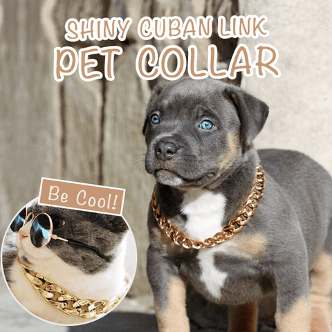 Glittering Boss-Look Cuban Link Pets Collar - MEKONGOOD.COM