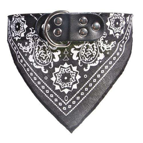 Image of Dog Leather Collar