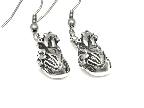 Anatomical Heart Earrings, Anatomy Jewelry in Pewter