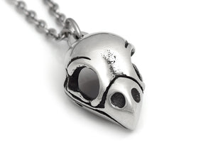 Bullfinch Skull Necklace, Ornithology Bird Jewelry in Pewter