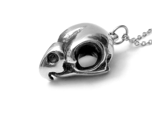 Cockatiel Skull Necklace, Bird Jewelry in Pewter