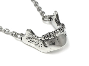 Mandible Necklace, Human Anatomy Jewelry in Pewter