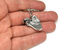 Scapula Keychain, Anatomical Keyring in Pewter