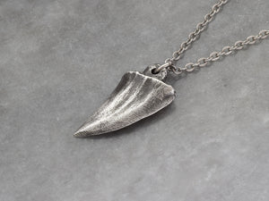 Small Shark Tooth Necklace, Beach Jewelry