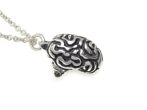Small Brain Necklace, Anatomical Jewelry in Sterling Silver