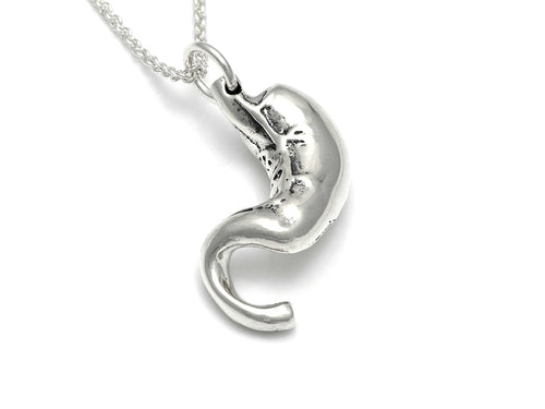 Anatomical Stomach Necklace, Anatomy Jewelry in Sterling Silver