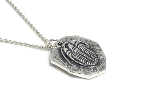 Trilobite Fossil Necklace, Archaeology Jewelry in Sterling Silver