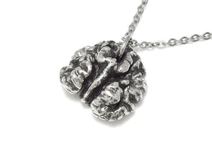 Walnut Necklace, Nature Nut Jewelry in Pewter