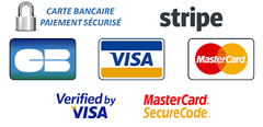 logo-paiement-securise-stripe-ceros-boxing