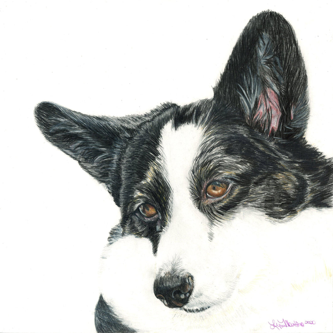 Custom Colored Pencil Portrait on Archival Paper - Pups of Color
