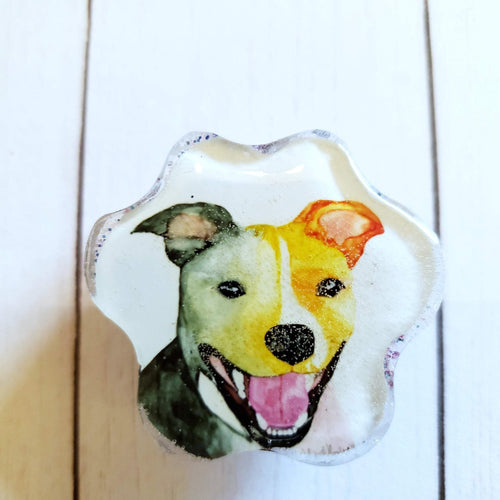 Pitbull Dog Paw portrait magnet, Custom Watercolor paw portrait, Animal Art, Pet Memorial, rainbow paw magnet, rainbow art magnet - Pups of Color