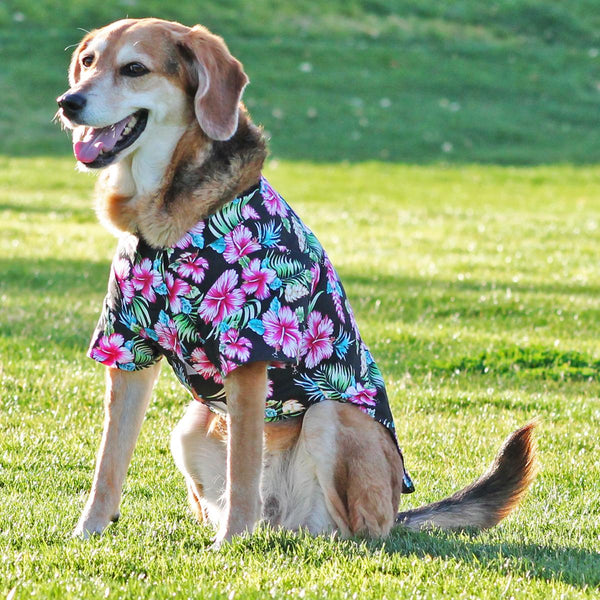 Hawaiian Camp Shirt by Doggie Design - Paradise Nights