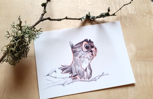 Out On A Limb Mini Art Print 4 inches x 6 inches Signed