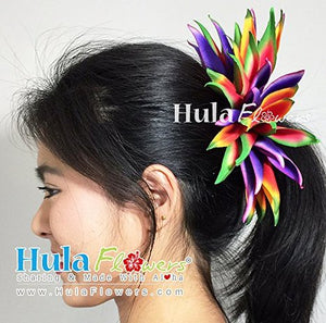 "Hawaiian Hula Polynesian Dancers Hair Silk Heliconias Braided Raffia 4"" Head Piece"
